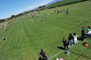 Campi di Calcio  N°05
